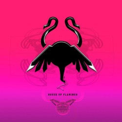 House of Flamingo